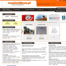 wozki_widlowe-website